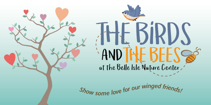 Birds and the Bees Logo